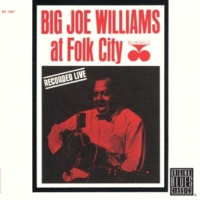 Big Joe Williams She's Doggin' Me [Live]