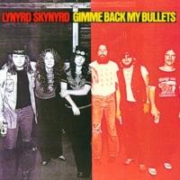 Lynyrd Skynyrd Roll Gypsy Roll