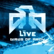 Live Birds Of Pray