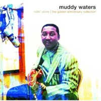 Muddy Waters Mean Red Spider