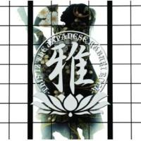 MIYAVI/SUGIZO 陽の光さえ届かないこの場所で feat.SUGIZO (feat.SUGIZO)