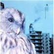 Plastic Tree 梟-フクロウ-