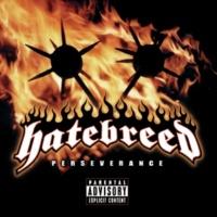 Hatebreed You're Never Alone [Album Version]