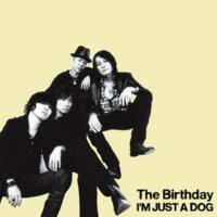 The Birthday ホロスコープ