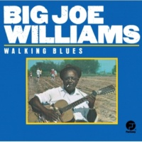 Big Joe Williams Jockey Ride Blues