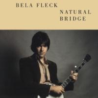 Béla Fleck Punchdrunk