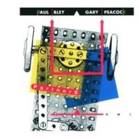 Paul Bley/Gary Peacock No Pun Intended [Instrumental]