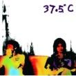 プレイグス 37.5℃
