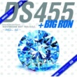 DS455 BAYBLUES RECORDZ presents WINTERTIME WIT' THA D.S.C. ~White Nite~