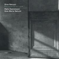 ディノ・サルーシ/パール・ダニエルソン/Jose Maria Saluzzi 記憶は南からやってくる