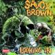 Savoy Brown Looking In