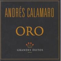 Andrés Calamaro No Me Pidas Que No Sea Un Inconsciente [Album Version]