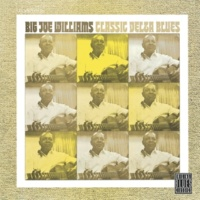 Big Joe Williams Walkin' Blues [Album Version]