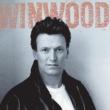 Steve Winwood Roll With It