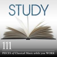 ベルリン・フィルハーモニー管弦楽団/クラウディオ・アバド 交響曲 第4番 ホ短調 作品98: 第2楽章: Andante moderato