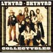Lynyrd Skynyrd Collectybles