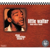 Little Walter One Of These Mornings