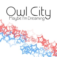 Owl City The Saltwater Room