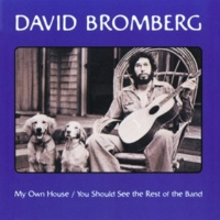 David Bromberg Sheebeg And Sheemore [Album Version]