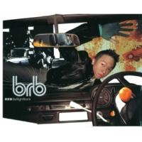 Ste Wong/Michael Brook Dong Ye (feat.Michael Brook) [Album Version]