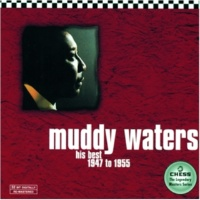 Muddy Waters Baby, Please Don't Go