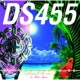 DS455/青山テルマ SUMMER PARADISE~Risin'To Tha Sun~fea山テルマ (feat.青山テルマ) [Feat. Thelma Aoyama]