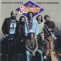 David Bromberg Peanut Man [Album Version]