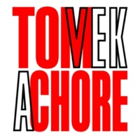 Tom Vek A Chore