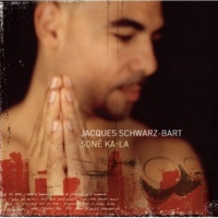 Jacques Schwarz-Bart The Chains