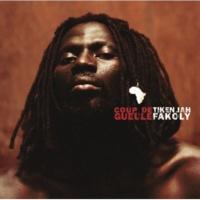 Tiken Jah Fakoly/Didier Awadi Quitte le pouvoir positive Black Soul (feat.Didier Awadi) [Album Version]