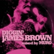 ジェームス・ブラウン DIGGIN' JAMES BROWN mixed by MURO