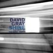 David Gray Shine