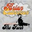 Brian Culbertson BRIAN CULBERTSON/BRI