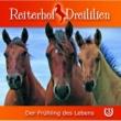 Reiterhof Dreililien Der Frühling des Lebens - Teil 2