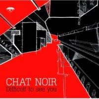 Chat Noir Creative Chaos