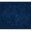 Ryan Adams Cold Roses [(Jewelcase Version) International Version]