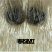 Bersuit Vergarabat Me Duele Festejar [Album Version]