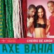 バンダ・シェイロ・ヂ・アモール Axé Bahia