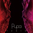 12012 12012 BEST ALBUM 「PUPA」 2007~2010