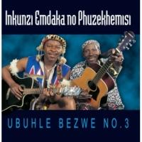 Inkunzi Emdaka Baholi [Album Version]