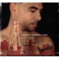 Jacques Schwarz-Bart Descent