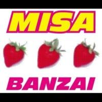 MISA BANZAI (ダンク・ワン vs. フォー・スキップス・リミックス・エディット)