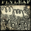 Flyleaf Remember To Live