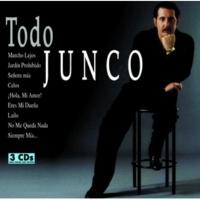 Junco Quore Zingaro (1)