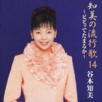 Tomomi Tanimoto ビビッてたまるか