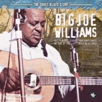 Big Joe Williams Levee Break Blues