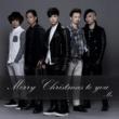 Mr. Merry Christmas To You