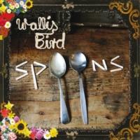 Wallis Bird Blossoms In The Street [Album Version]