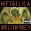 Metallica サム・カインド・オブ・モンスター(エディット)