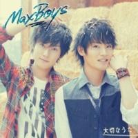 Maxboys(Hosoya Yoshimasa + Masuda Toshiki) ボタン